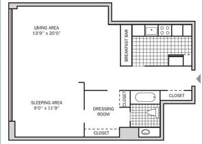Deluxe Studio 650 sq. ft.